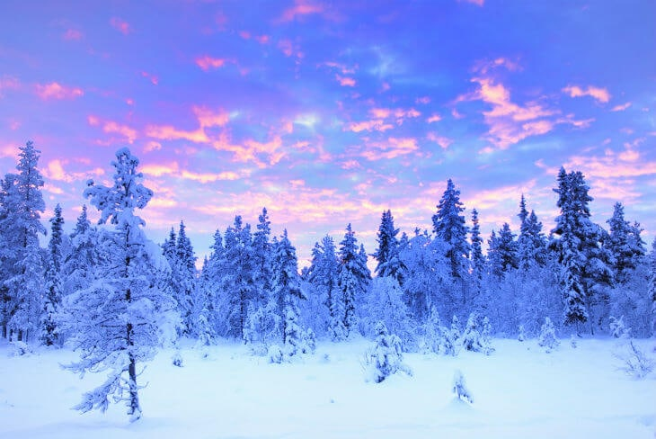 Lapland swedish nature