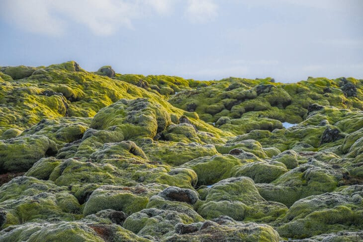 lavalandskap