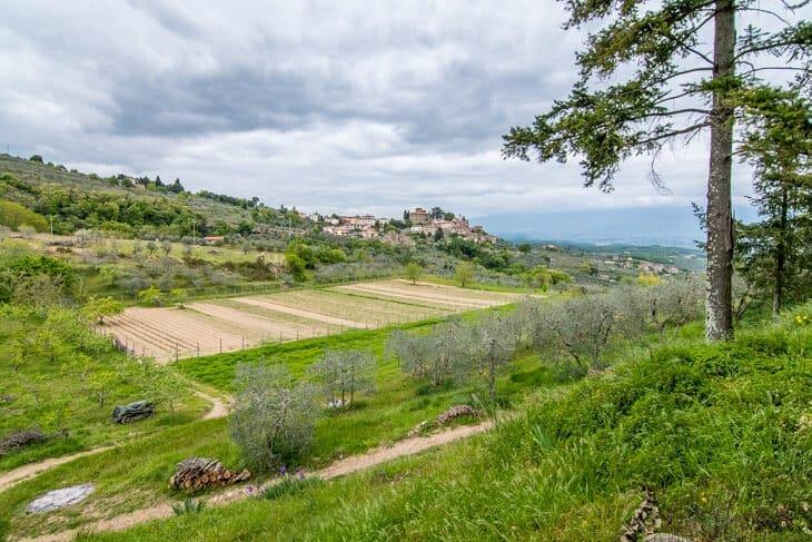 Tuscany homestay