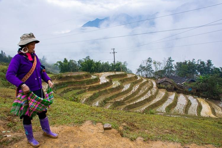 Risfält i Sapadalen