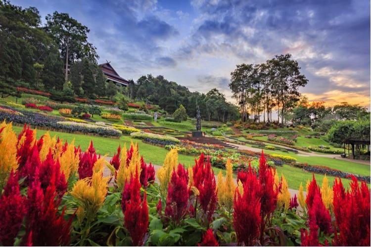 Sevärdheter i Chiang Rai