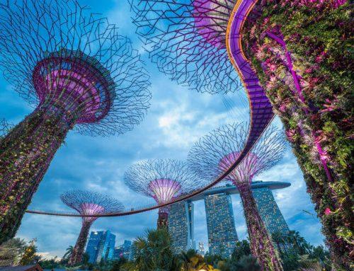 Saker att göra i Singapore som turist