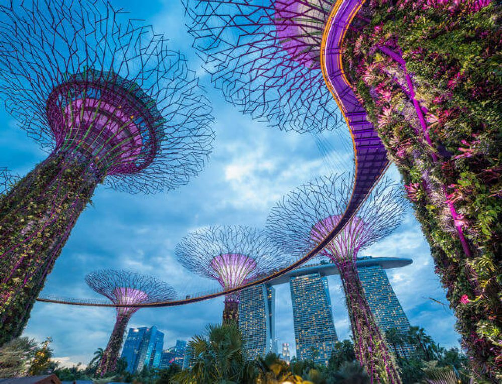 Gardens by the Bay in Singapore - My Experience + Useful Info