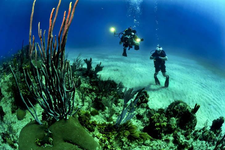 dykning