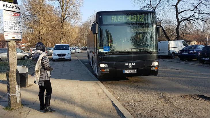 transferbuss auschwitz