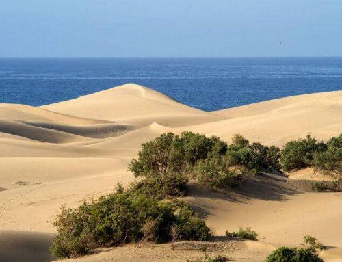 Maspalomas – En lugn och trevlig turistort på Gran Canaria