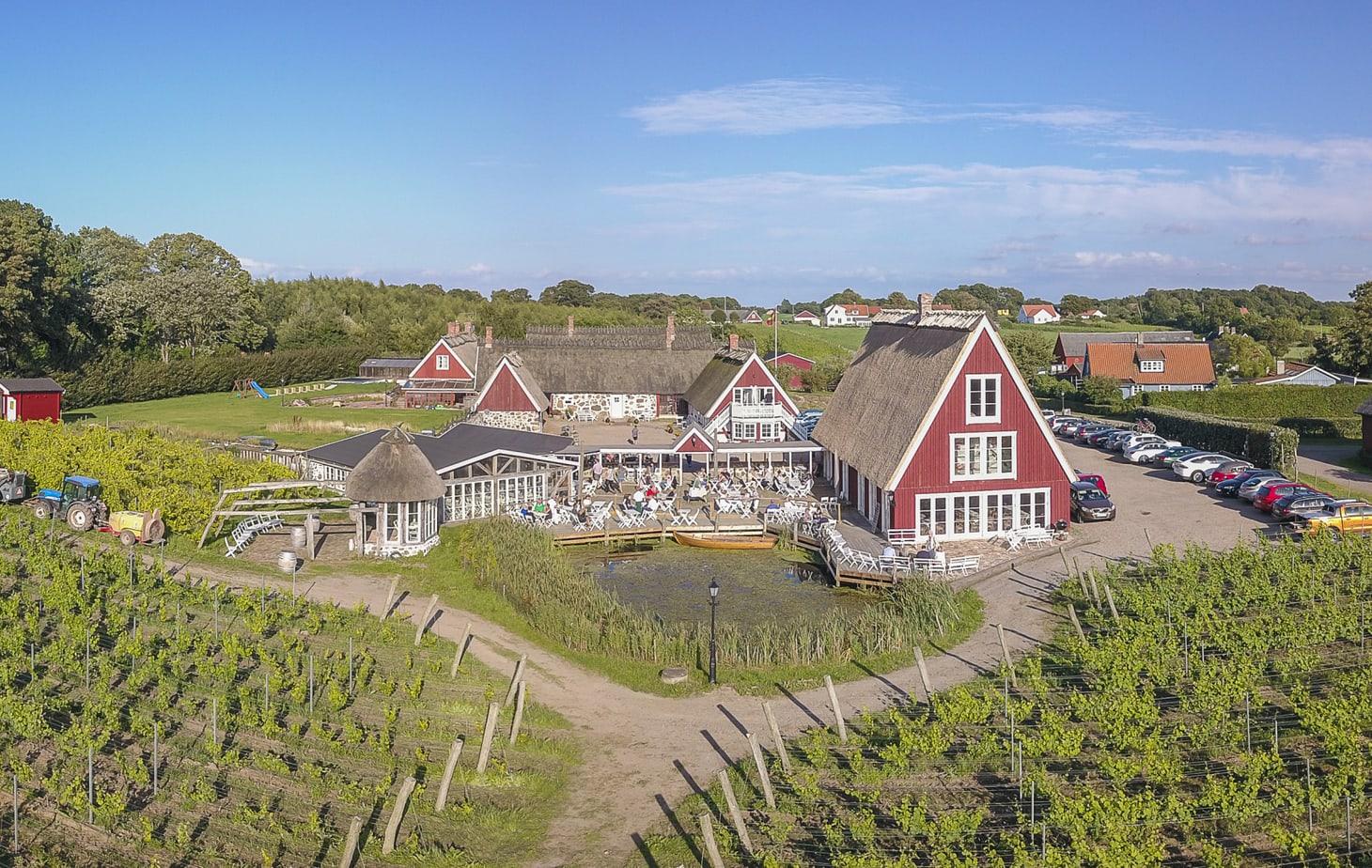Arilds vingård