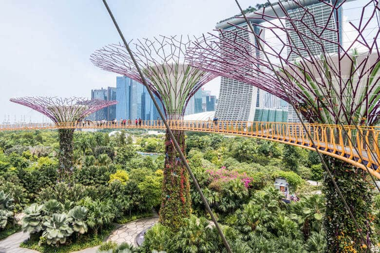 Gardens-by-the-bay-walk