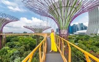 ocbc skywalk singapore