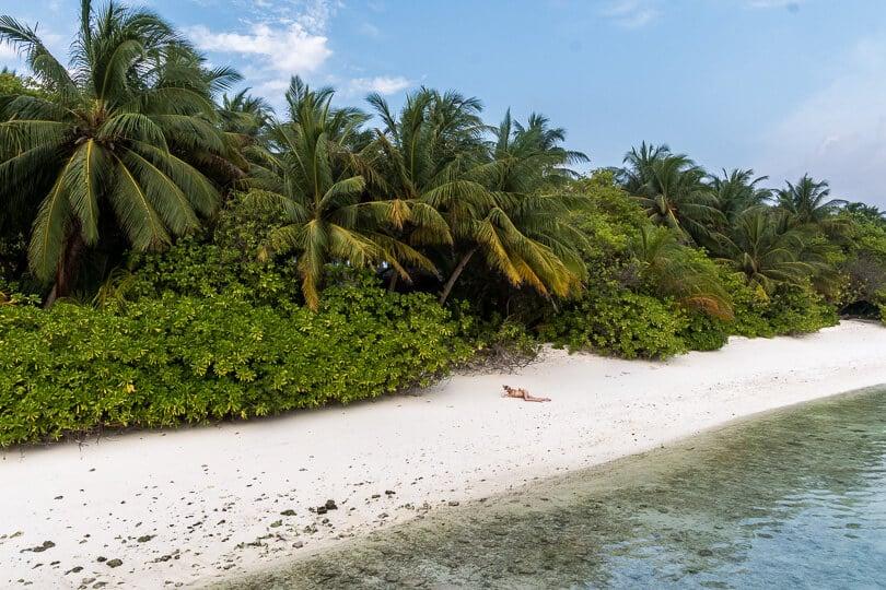 paradisstrand maldiverna