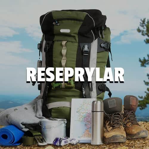 reseprylar