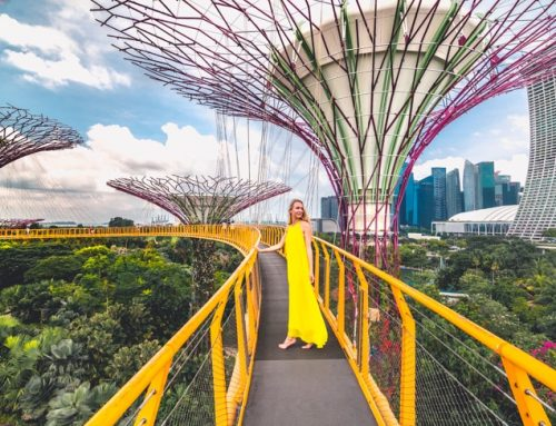 55 Reasons why everyone should visit Singapore at least once in their life