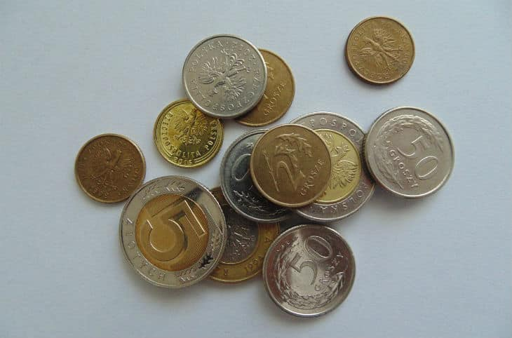 valuta i polen mynt