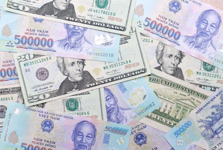 dong eller dollar i vietnam
