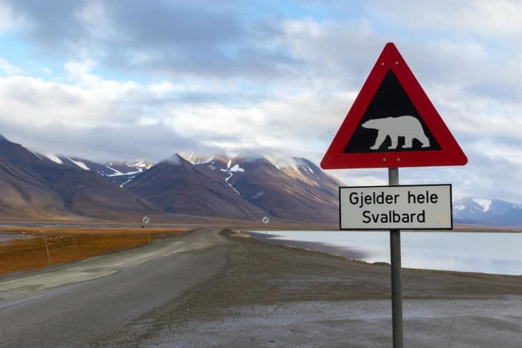 svalbard - facts about norway