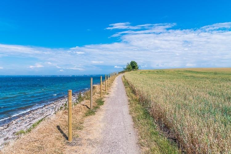 Ven cykelväg