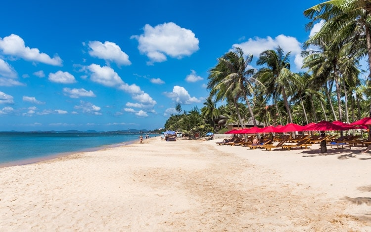 phu quoc tips