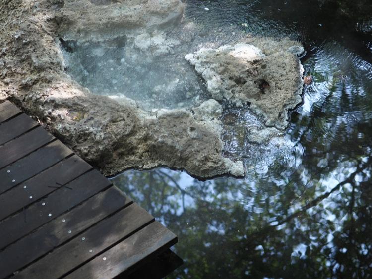 Sungai Klah Hot Springs