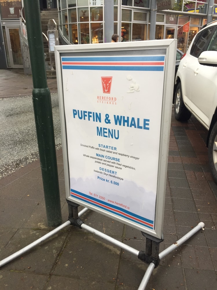 puffin and whale meat