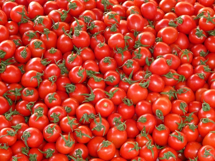 tomato - Italy facts