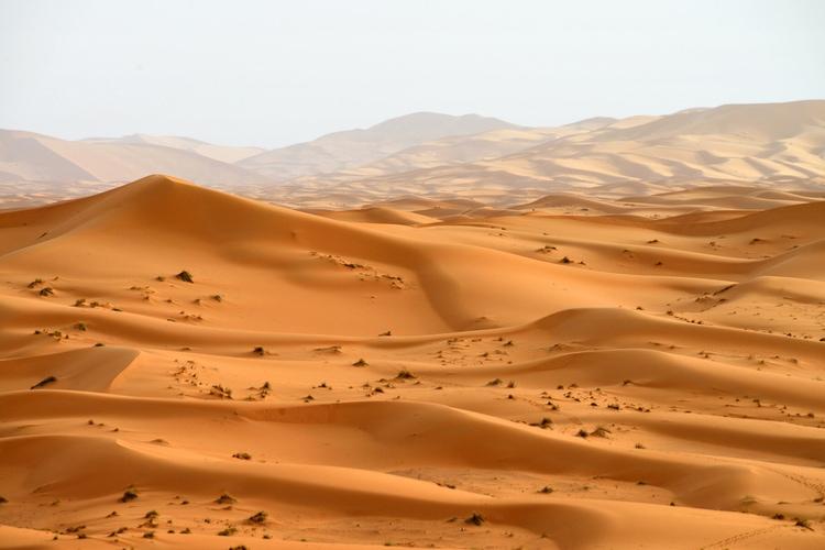 el desierto más grande del mundo, el Sáhara