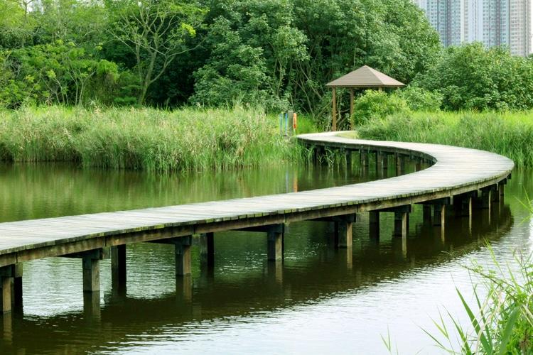Parque del humedal de Hong Kong