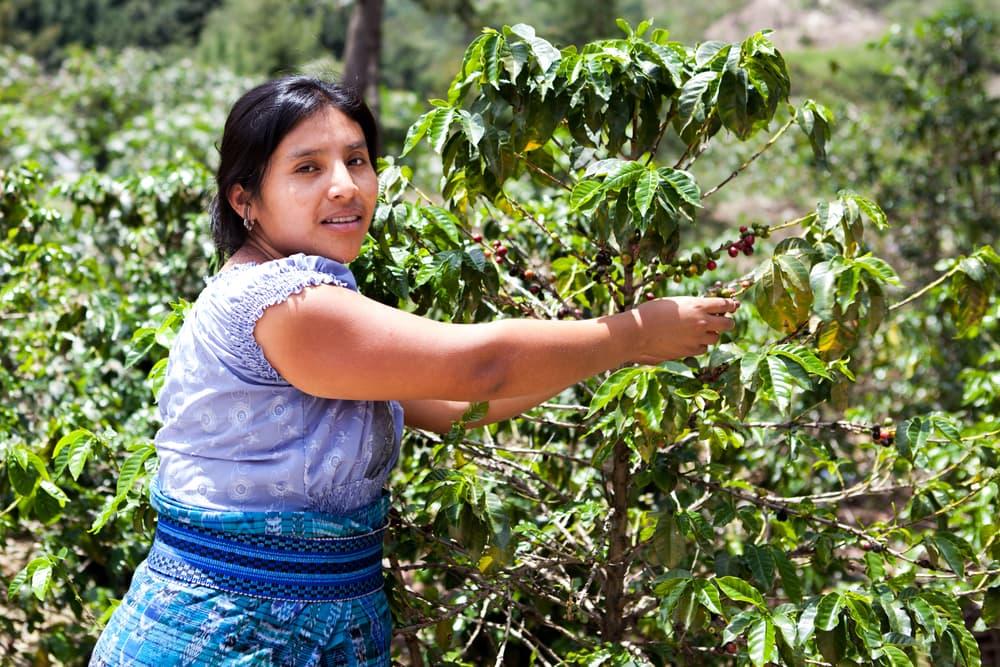 Costa Rica woman
