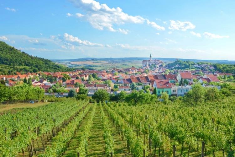Vin Moravia