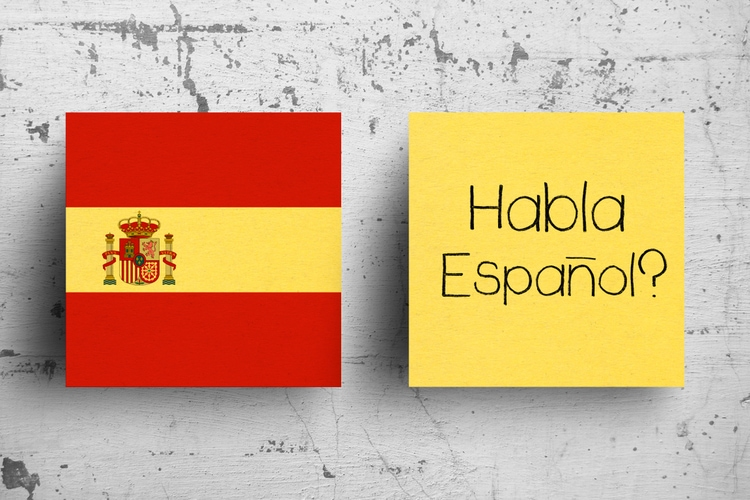 Spanish is one of the most spoken languages in the world