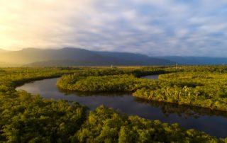 Curiosidades sobre la selva amazonica