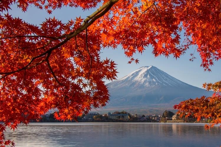 Autumn Leaves Festival Japan