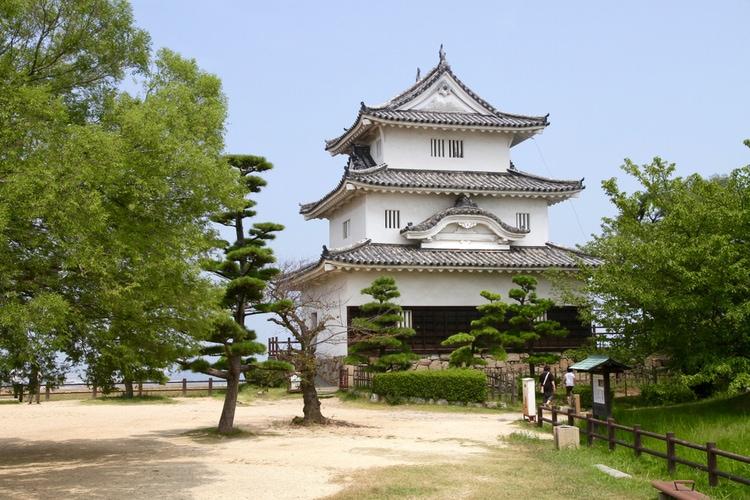 Un castillo de Japón