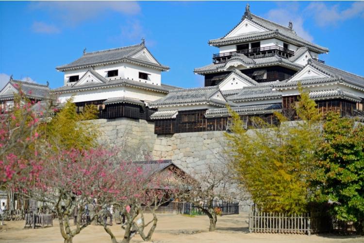 Castillos originales en Japón