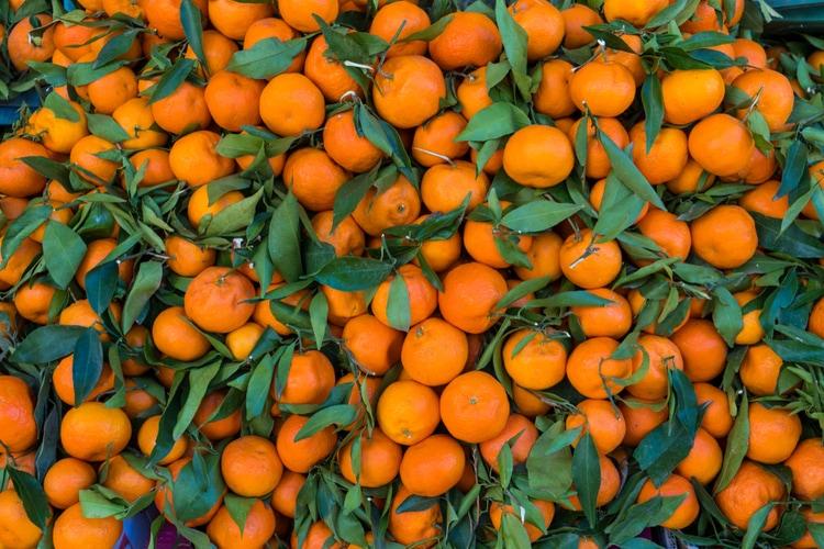 Moroccan citrus fruits
