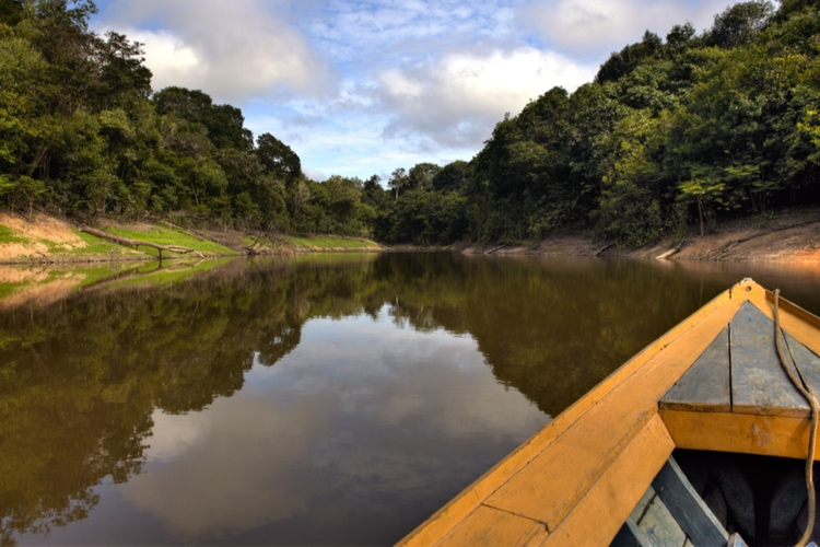 15 Interesting Facts About The Amazon River Swedish Nomad
