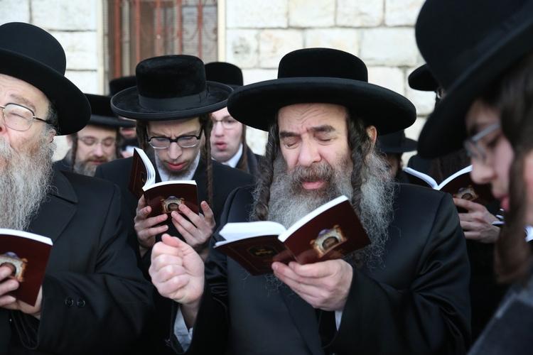Ortodoxa judar