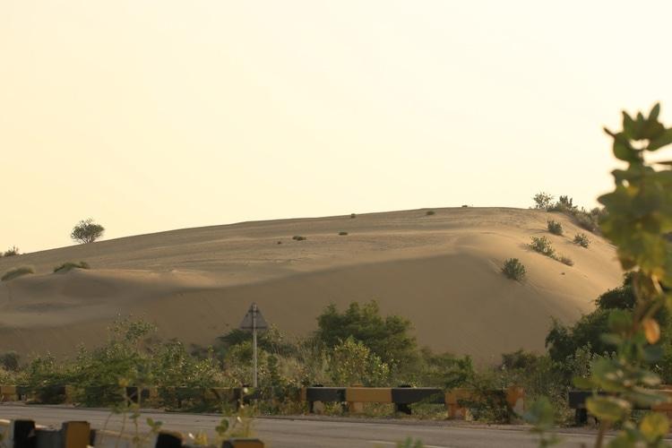 Tharparkar desert