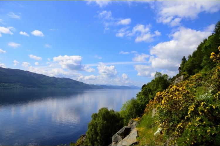 Loch Ness nature