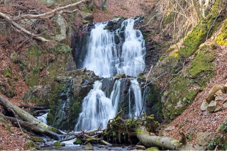 Forsakar – En vacker ravin med Skånes högsta vattenfall