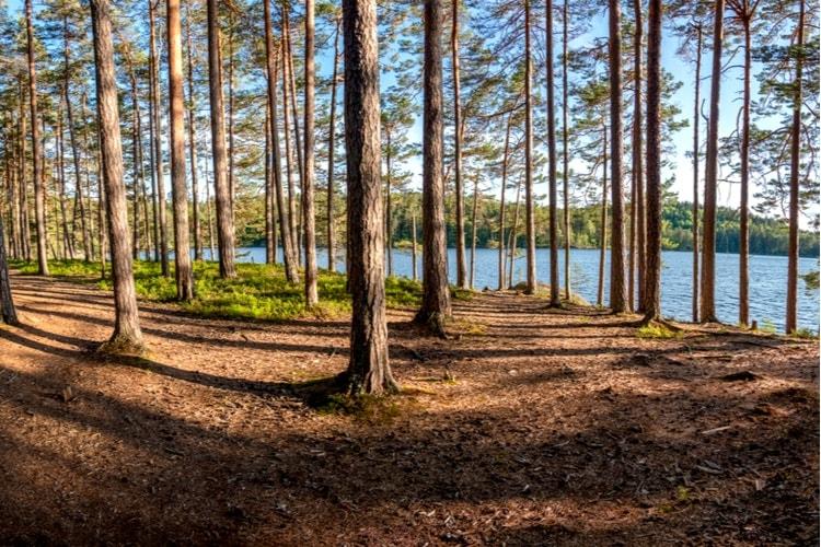 Tiveden nationalpark