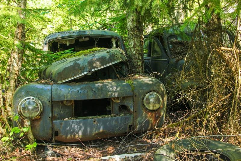 En gammal bil i Båstnäs bilkyrkogård