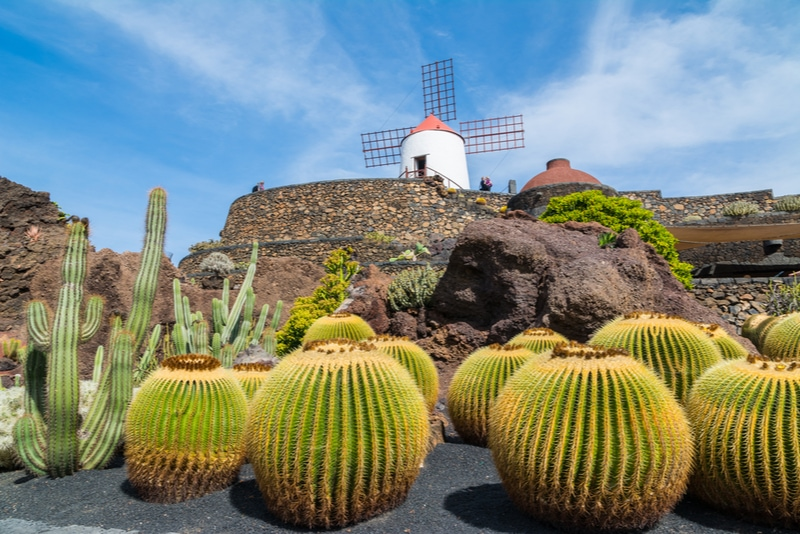Jardín de Cactus in Lanzarote