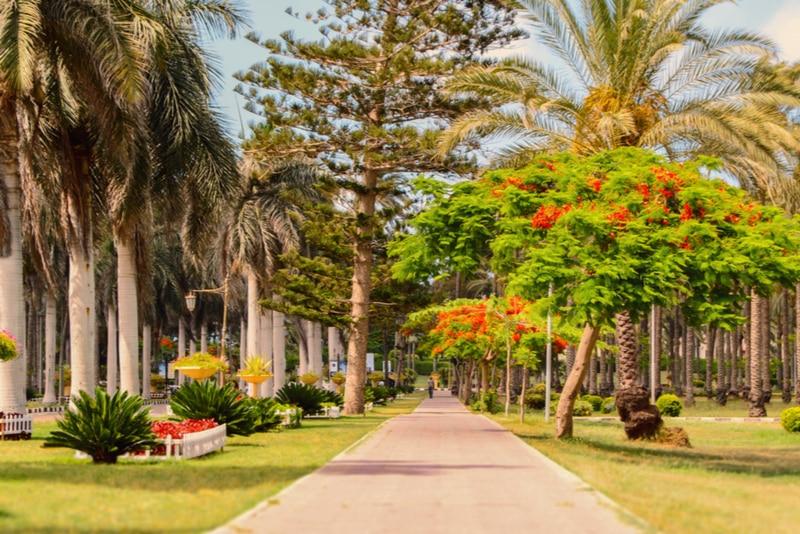 Montazah Gardens