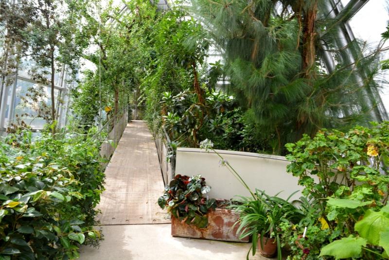 Botanical graden Graz