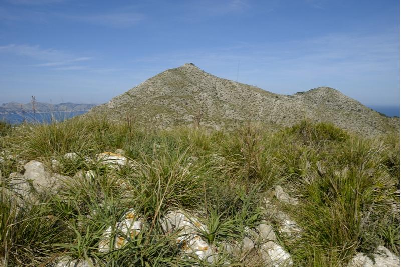 Talaia D'Alcudia