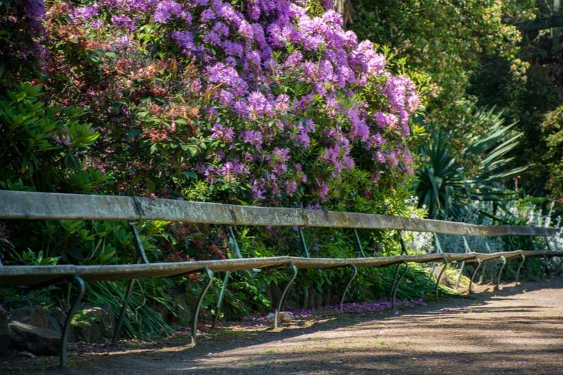 City Park in Launceston