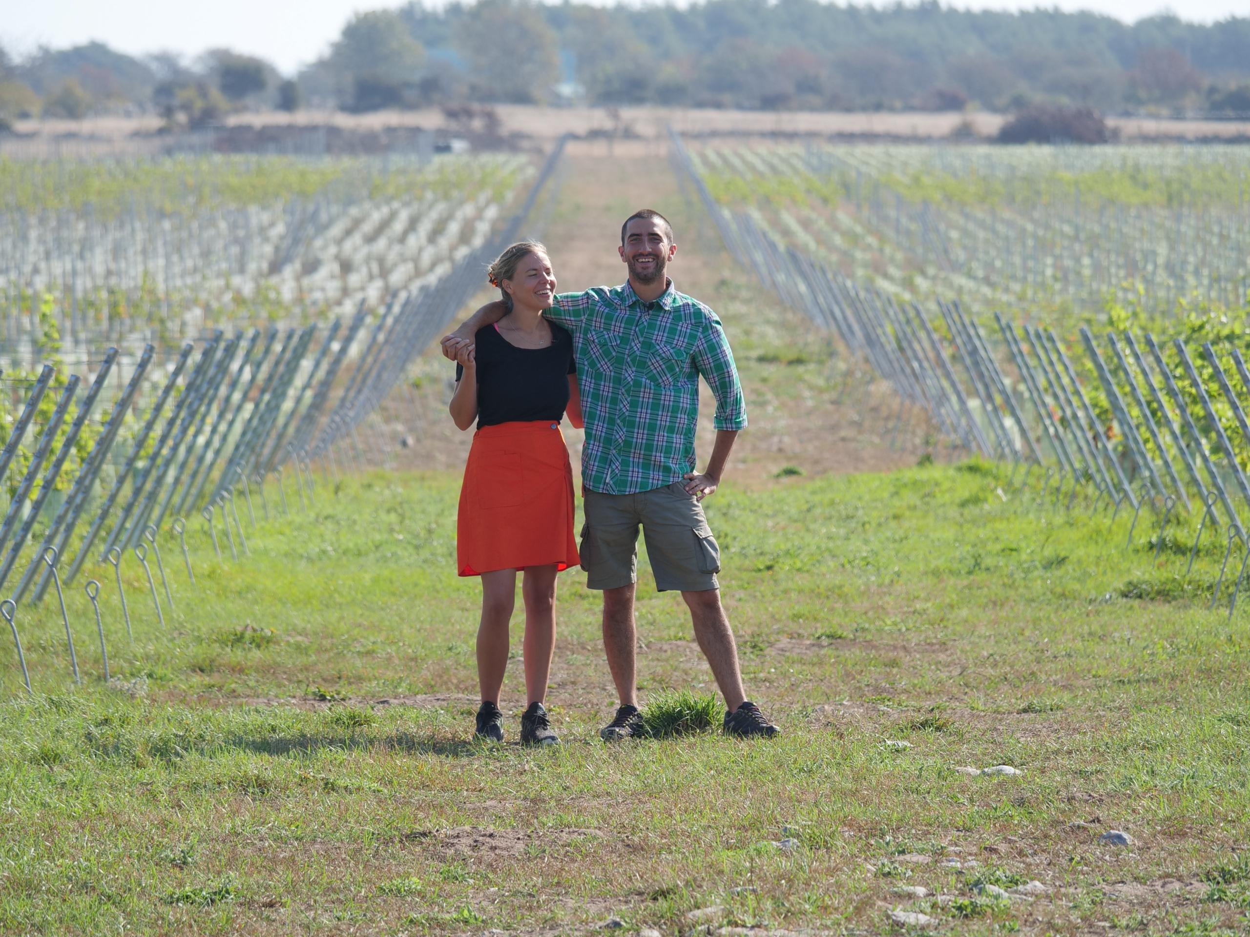 Långmyre vingård