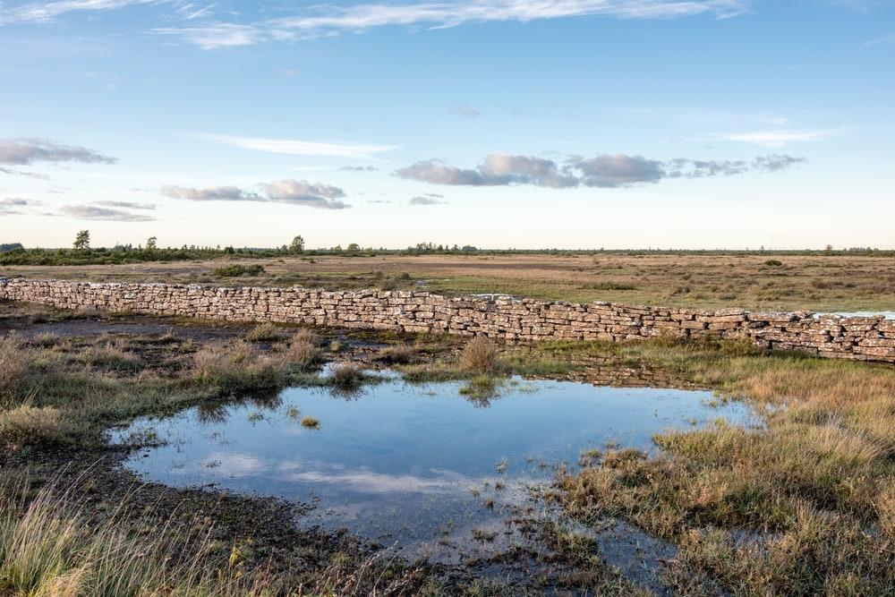 Stora Alvaret Södra Ölands odlingslandskap.jpg
